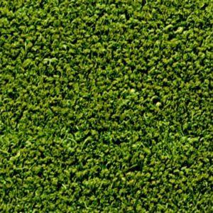 Tapete Capacho Verde - MARTURF